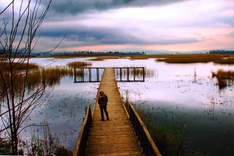 Efteni Gölü - Efteni Lake