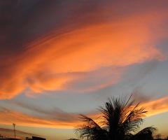Orange Clouds !