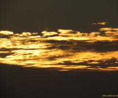 Golden Clouds !