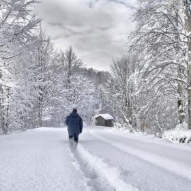 Kar-Kış