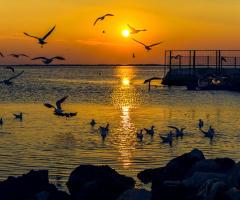 Günbatımı ve Yaşam