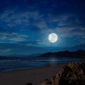 Moon Light !