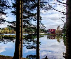 Bolu-GÖLCÜK Doğa Parkı