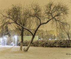 Kış Masalı - The Winter's Tale