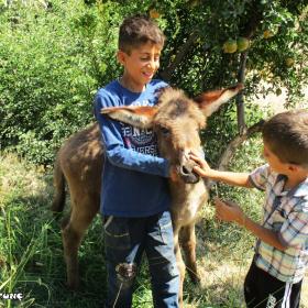 Bağgöze Köyü / SİİRT