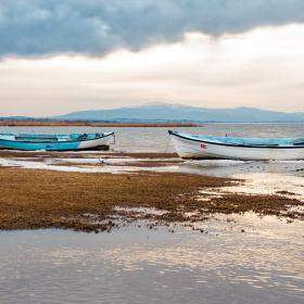 Göl Kıyısı 2