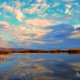 Sazlık ve Bulutlar