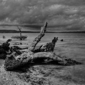 Dosa Beach
