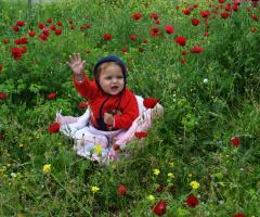 Selam :)