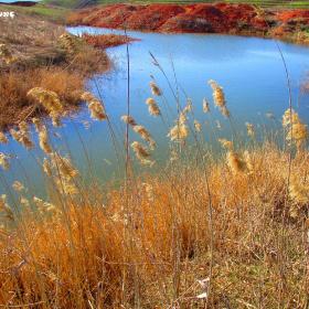 Doğal Göl
