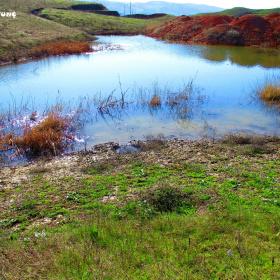 Küçük Yağmur Gölü