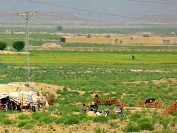 Baloch Nomads ,Chiltan valley