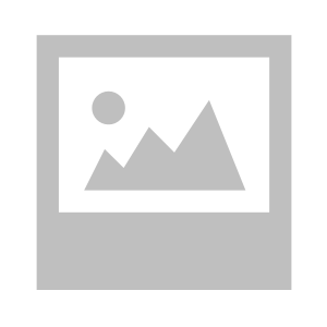 Blue hour at the castle