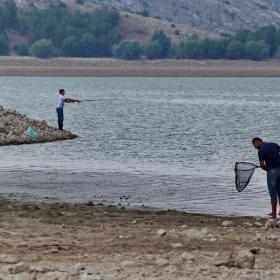 Hayat tıpkı bir balıkçının dediği gibi; Rastgele..
