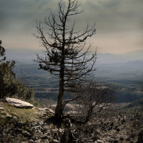 Dağlarda Gün Batımı