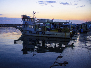 Güzelbahçe Fischen Zuflucht bei Sonnenaufgang 2