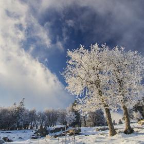Kışı da Hoş...