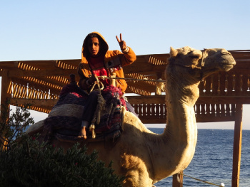 Dahab'da Bir Gün