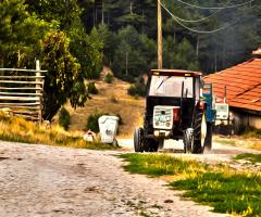 Köy Yolları 2