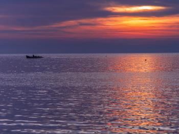 Kuş Cenneti, Bandırma