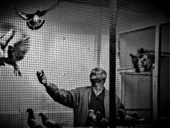 Kuşbaz.....