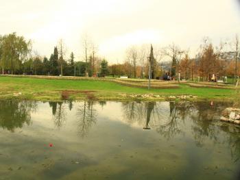 Seka park