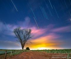 Rastro das estrelas