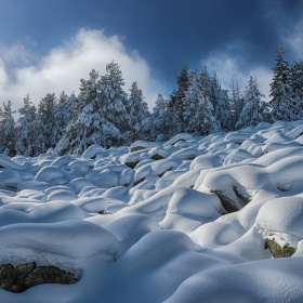 Winter view, Vitosha mountain