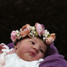 Nil bebek