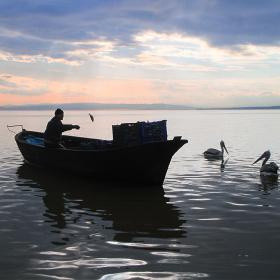 Balıkçı, Manyas