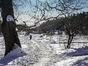 Karda zordur yürümek