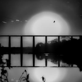 Por do sol em preto e branco