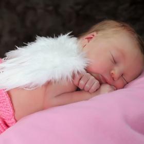 Elisa bebek