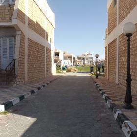 Egypt  - North coast    - just A lane