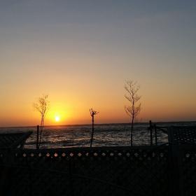 Egypt  - Alexandria - Sunset