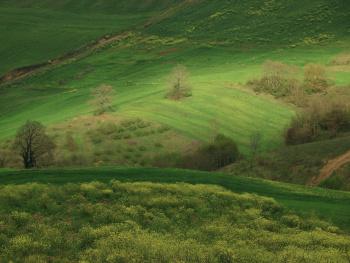 Dağ Bayır 2