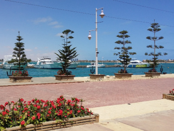 Egypt  - North coast  - Porto marina