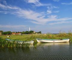 Gölyaka-Manyas
