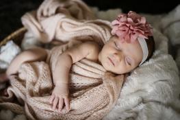 Melike bebek