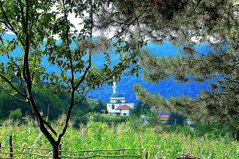 Servetiye Camii Köyü