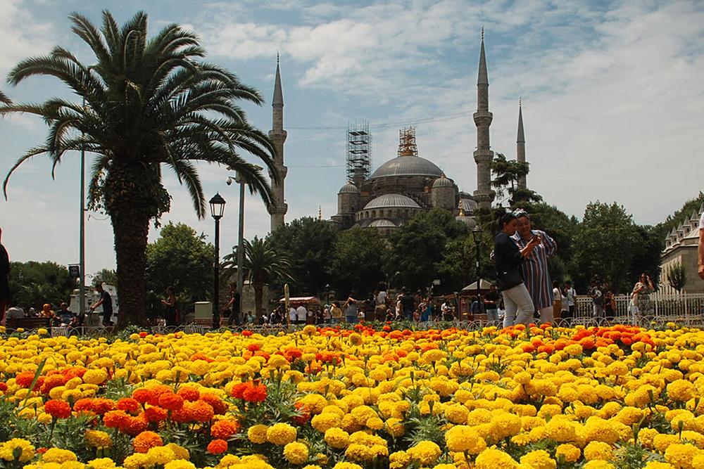Sultanahmet Camii & Renkler