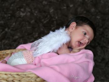 İdil Bebek
