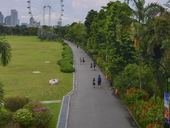 Garden bay