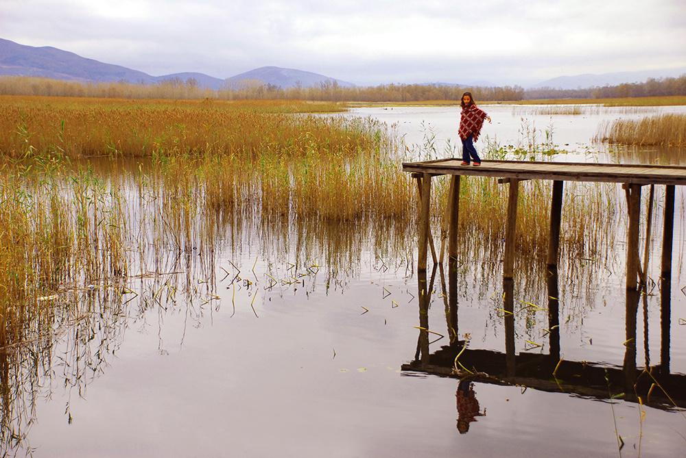 Efteni Gölü & Model & Yansıma
