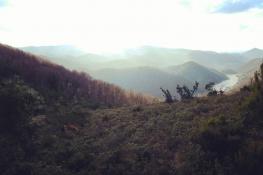 Çatalağzı/Baraj
