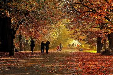 Huzur ve mutluluğun saklandığı mevsimdir sonbahar.