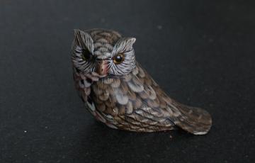 Owl Moment ...