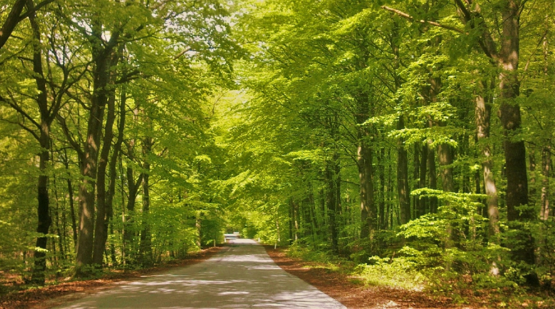 Green View .....