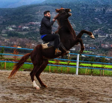 O Atın Üstündeki Türk Değilse Yüktür..