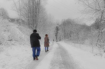 Kış Halleri